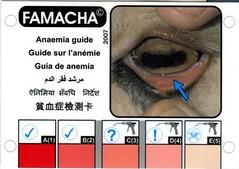 FAMACHA(c) card