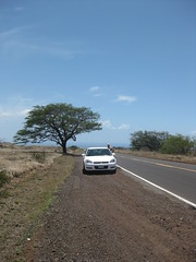 Road to Waikoloa Village