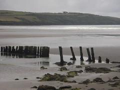 Harbour View Pylons