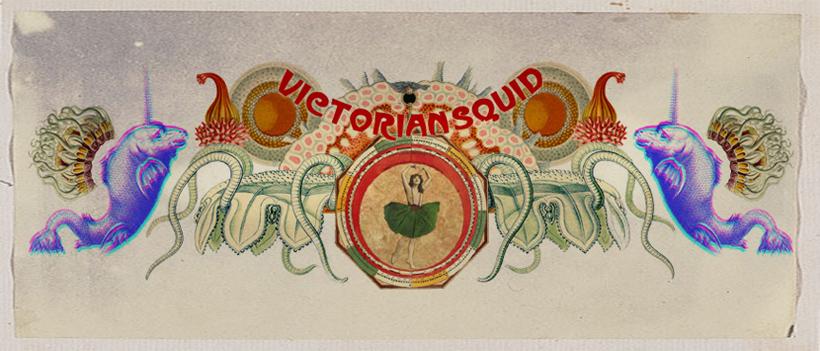 Victorian Squid