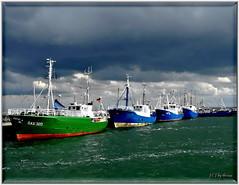 Harbor Sassnitz / Rügen