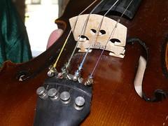 Violin Bridge (.Larry Page) Tags: bridge music lumix panasonic violin instrument string strings larrypage abridge fz50 sh60 scavengerhunt101