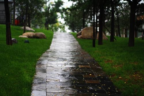 雨后的大雁塔北广场