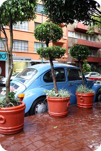 VW bugs are a hot commodity in Mexico