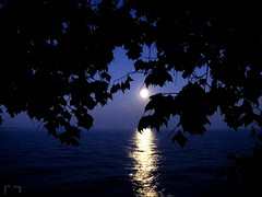 Moon still low in the sky. (AJL in Chicago) Tags: sky moon chicago scenery lakemichigan fullmoon nightsky