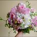 Sweet Akito Roses, Sweet Peas, Stock, Freesia