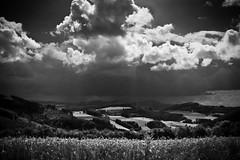 _ (arbeer.de) Tags: sky bw clouds dark landscape landschaft sauerland clearingthearchive