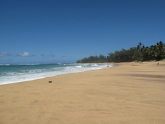 Tunnels Beach (lesleeann74) Tags: kauai napalicoast queensbath tunnelsbeach