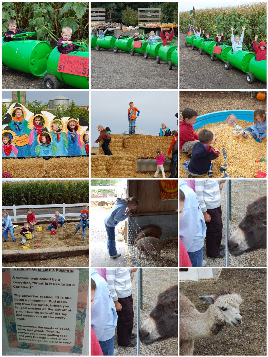 Pumpkin Farm Collage