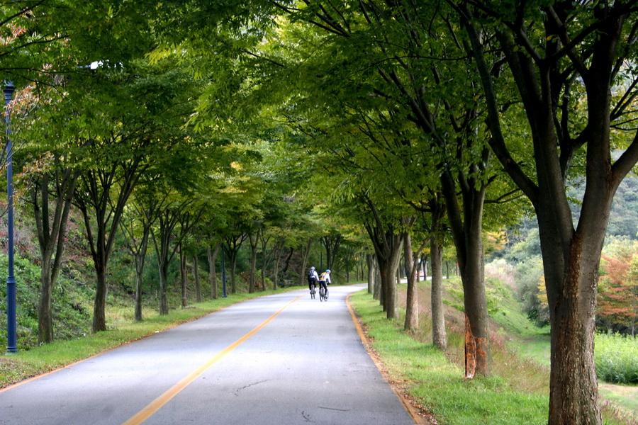 Geumgang riverside ride