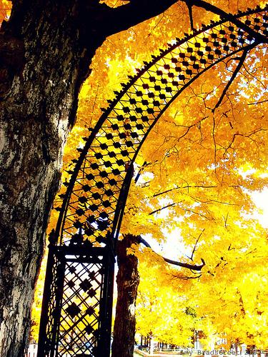 fretwork arch