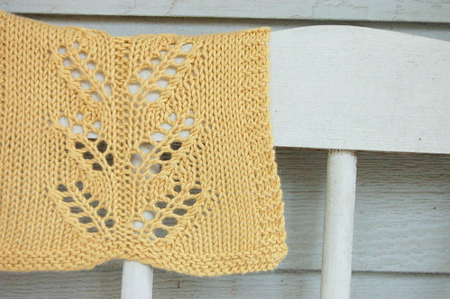 washcloth knit1