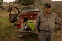 PRACTICAL ASSIGNMENT #6: FIVE FAVORITES (roberthathaway) Tags: ca usa jose lettuce fields ojai truch
