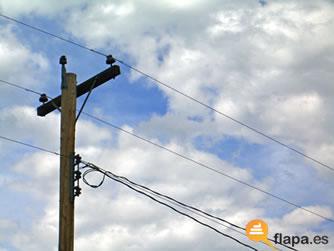 cosas_pequeñas cable luz cosas día camaleon minimas cosas nimias