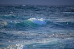 Atlantic waves (monika & manfred) Tags: sea water waves wildlife shoreline foam mm cliffhike orkneys rollingin orkneyislands scotland2009 holidays3