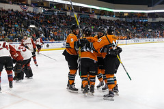 "Missouri Mavericks vs. Quad City Mallards, February 18, 2017, Silverstein Eye Centers Arena, Independence, Missouri.  Photo: John Howe / Howe Creative Photography • <a style=""font-size:0.8em;"" href=""http://www.flickr.com/photos/134016632@N02/32880624562/"" target=""_blank"">View on Flickr</a>"