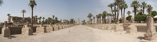 P1030798_Egypt_Luxor_Temple_panorama_01_egypt_luxor_luxorTemple