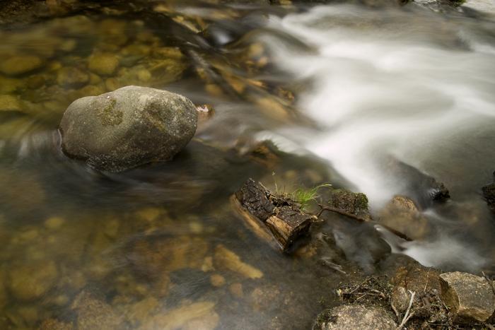 Una tarde en el río