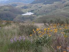 Moccasin Lake 3.JPG