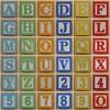 Educational brick alphabet (Leo Reynolds) Tags: fdsflickrtoys photomosaic alphabet alphanumeric abcdefghijklmnopqrstuvwxyz 0sec groupphotomosaics mosaicalphanumeric xleol30x abcdefghijklmnopqrstuvwxyz0123456789 xphotomosaicx hpexif xratio1x1x xsquarex xx2009xx