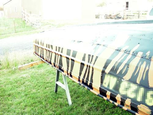 Tiger boat
