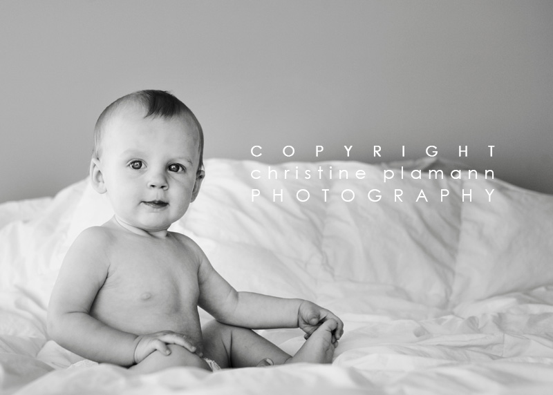 milwaukee baby photographer