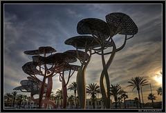 La Pineda Metal Trees