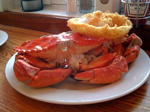 birthday_crab