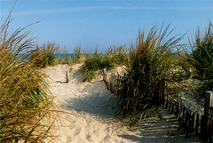 Foot Prints in the Sand - archived (Dino Langis) Tags: troll magik beachscapes musicsbest trolledproud