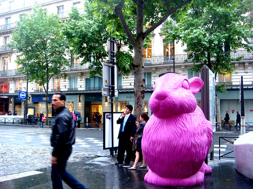 big pink bunny of paris