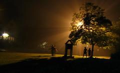 merry wanderers of the night (Hallie Jo) Tags: street longexposure friends light boy tree lamp girl leaves kids night pose gold evening still shine play rays friendlychallenges