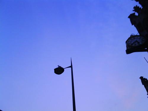 Photo 1178