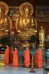 Buddhas and Monks