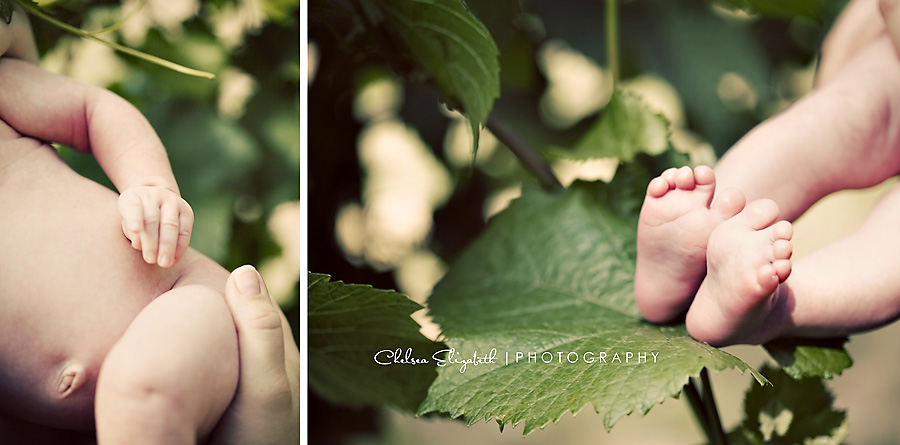 vintage newborn baby details toes, fingers and body grape leaf