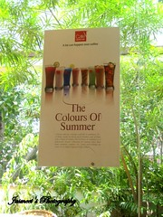Cool Babes of the Summer (Le Rtroviseur) Tags: ccd coldcoffee chanakyapuri