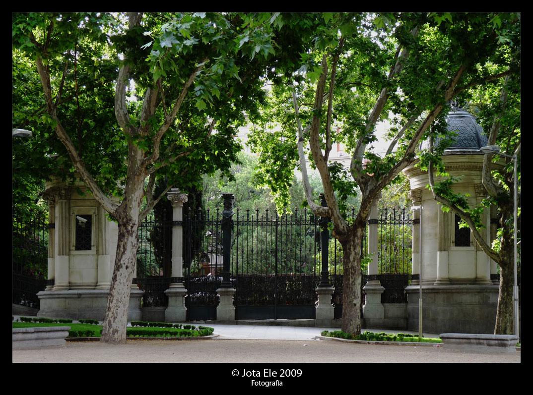 Jardín Botánico I
