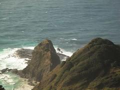 Cape Rēinga and pohutukawa