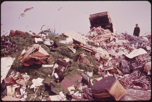 Dumping Garbage in Landfill Operation on Jamaica Bay Increased Water Pollution as Well as Serious Ecological Damage Is Feared 05/1973