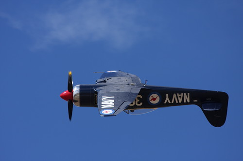 Warbird picture - Hawker Sea Fury upside down