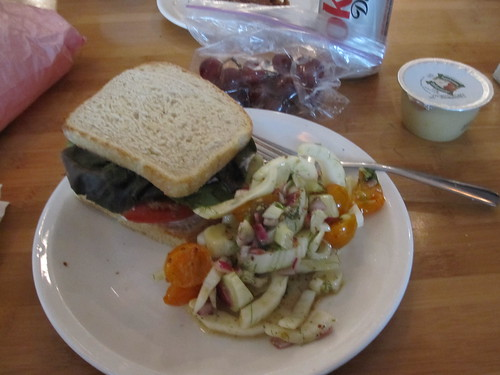 BLT, fennel salad, grapes, Diet Coke and apple sauce from home