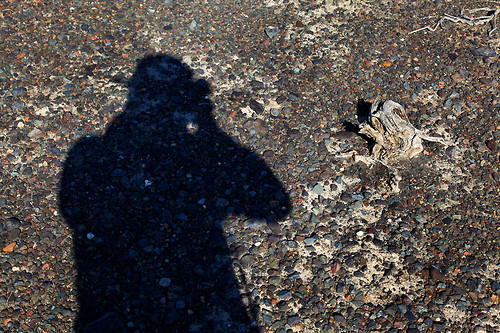 IMG_2276-w me shadow