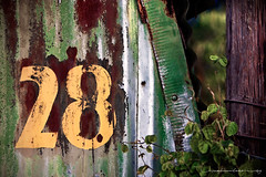 Twenty-eight ...the perfect number? (Rex Maximilian) Tags: barn tin hawaii paint country rustic hangar rusty number waimea fade 28 bigisland patina bigisle quonsethut