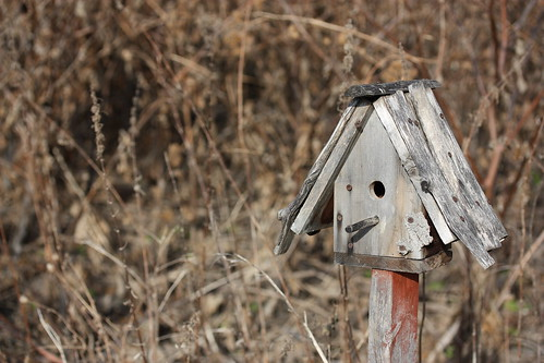 Riverwalk Birdhouse 2