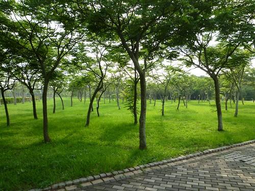 taichung-metropolitan-park-18