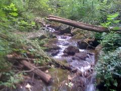 10 - Cane Creek