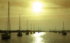 Sail into the Sun (Simon Downham) Tags: sun yellow gold golden solitude sailing shine shining chichester chichesterharbour