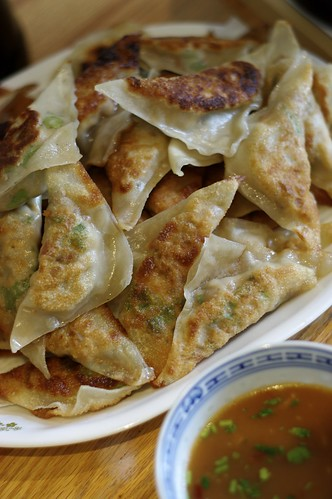 Shiitake Mushroom Potstickers with Spring Onion, Ginger and Cilantro