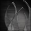 in the jungle (rita vita finzi) Tags: lines composition blackwhite d jungle giraffe astract summermadness explore2009 summerbrilliance orzebratoobutlionsnolionshereexceptforthesongd