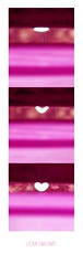 1 2 3 (Darling Starlings) Tags: pink 2 3 love collage 1 blurry heart shapes outoffocus raindrops sequence hue bookmark changed forming grows