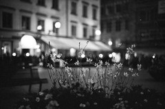 (patrickjoust) Tags: street leica old city flowers light urban bw white black blancoynegro home stone night analog 35mm square town focus europa europe flickr fuji sweden stockholm bokeh f14 cosina voigtlander patrick rangefinder cobbled 150 1600 cobble cobblestone stan fujifilm neopan sverige 40 manual 40mm m3 rodinal joust 35 range finder developed nokton och sv cv biancoenero suecia develop vitt gamla svart blancetnoir leitz staden svartvitt mellan schwarzundweiss stadsholmen terrascania autaut voigtlandernokton40mmf14mc lovelycity broarna patrickjoust wetlar